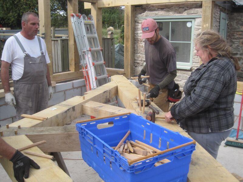 Oak pegs timberframe