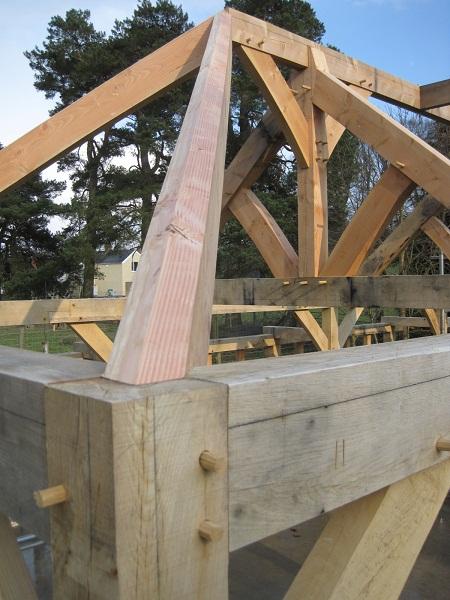 Green oak hip rafter